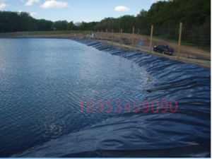 Hongxiang HDPE Geomembrane Used in Fish Farm Waterproof pictures & photos