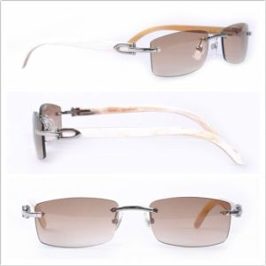 Buffalo Sunglasses/ Fashion Sunglasses /Sunglasses pictures & photos