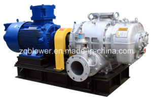 Special Gas/Chemical Gas/Natural Gas Roots Blower (RRG-500) pictures & photos