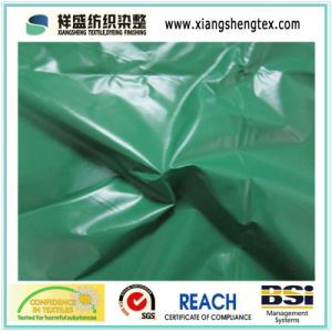 400t Nylon Taffeta with Down Proof for Down Jacket pictures & photos