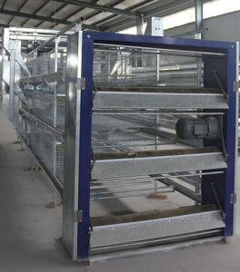 New Design Bird Cages for Broiler Chicken Farm Poultry Equipment pictures & photos
