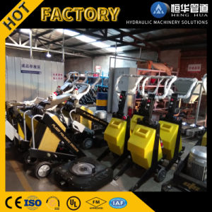 Good Technology 220V /380vconcrete Grinding Machine pictures & photos