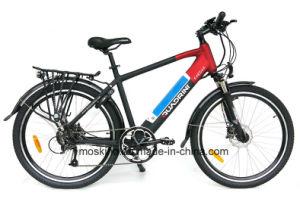 Italian Manufacturer En15194 TUV 250W Electric Bicycle (TDE11Z)