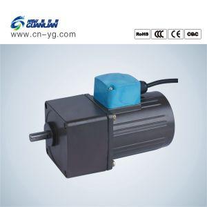 Yn90 110V/220V High Torque AC Motor