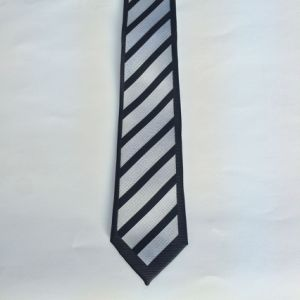Micro Poly Skinny Ties (8414) pictures & photos