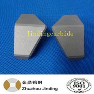 Tungsten Carbide Shield Cutter Tips for Tunnel Boring Machine for Europe pictures & photos