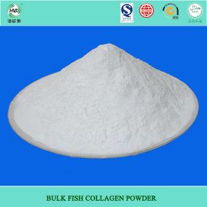 Marine Fish Collagen Powder (002)