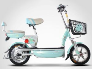 Various Colors Electric Bike (TDT1332Z) pictures & photos