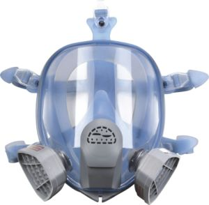 Silicone Full Face Gas Mask (respirator) (9900A) pictures & photos