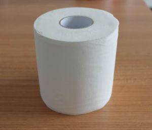 Toilet Paper, Toilet Tissue Roll pictures & photos