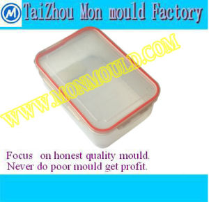 Plastic Mould for Picnic Food Storage Box pictures & photos