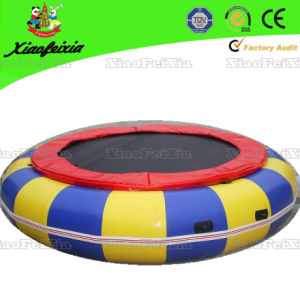 Big Inflatable Round Trampoline for Sale (LG071-2) pictures & photos