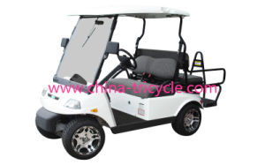 3200W Brushless Electric Golf Car (SP-EV-01) pictures & photos
