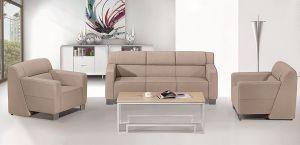 High Quality New Design Sofa pictures & photos