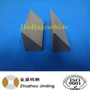 Carbide Cutter Part for Cutting pictures & photos