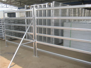 Cattle Panel Brace, Stay Post, Galvanized Finish pictures & photos