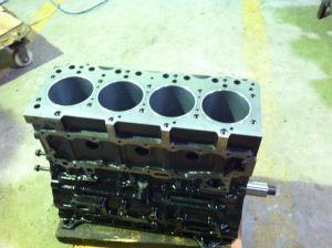 4bd1 Diesel Engine pictures & photos