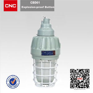 High Quality for Explosion Proof Lamp (CBD61) pictures & photos