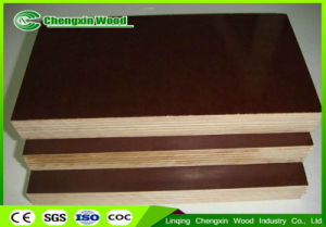Film Faced Plywood with Poplar Core and Phenolic Glue From Chengxin Factory pictures & photos