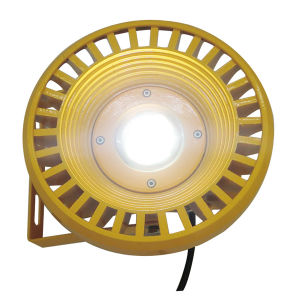 Projector 30W IP65 COB Explosion-Proof LED Mining Lamp (WY3300) pictures & photos