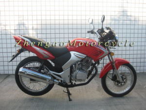 250cc Motorcycle for Motorbike (Tiger2000)