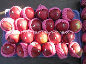 Fresh Huaniu Apple pictures & photos