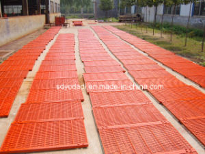Casting and Forging Pig Farrowing/Nursery/Fattening Crate BMC Floor pictures & photos