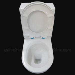 6002 Australian Standard Sanitary Ware Washdown Two Piece Watermark Ceramic Toilet pictures & photos