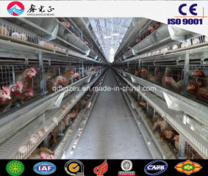 Prefabricated Steel Structure Automatic Poultry House, Chicken House with Equipments (JW-16206) pictures & photos