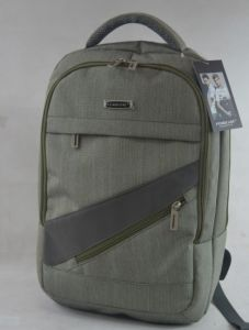 Backpack Laptop Computer Nylon Leisure Outdoor 15′′ Laptop Backpack pictures & photos