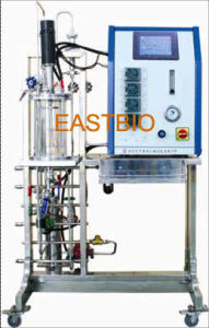Eastbio® Gbjl Series in-Situ Sterilizable Mechanical Stirred Glass Fermenter pictures & photos