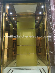Srh China House Elevator Lift pictures & photos