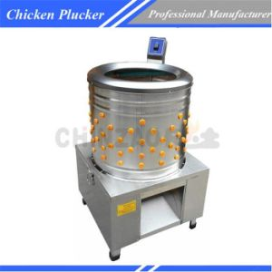 Electric Poultry Plucker Chicken Factory Equipment Chz-N50 pictures & photos