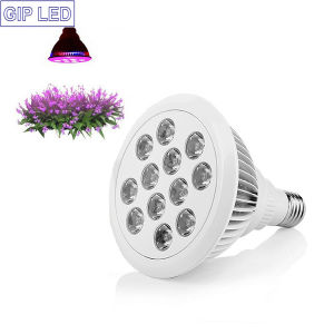 Factory Waterproof 12W 24W PAR38 E27 Grow Light LED pictures & photos
