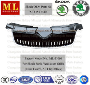 Auto Grille for Skoda Fabia From 2007 (5JD853668B) pictures & photos