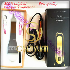 100 Original Comb Ceramic Electric Hair Brush Beauty Salon Equipment LCD Digital Hair Straightener pictures & photos