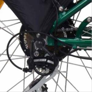 """26"""" 250-500W Folding Electric Bike Tdf02z pictures & photos"""