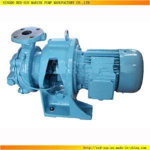 Good Quality 50Hz Self-Priming Sewage Water Pump (RS-996)