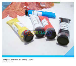6*12ml Colors Non Toxic Acrylic Paint in Hexagonal Lid Aluminium Tube for Drawing pictures & photos