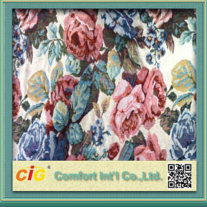 Sofa Fabric Material with New Designs and Colorways pictures & photos