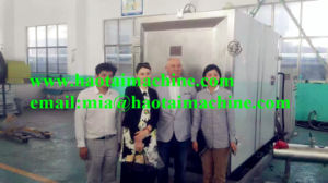 Vacuum Freeze Dryer for Fruit and Vegetables pictures & photos