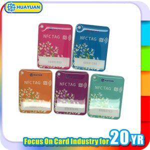 Members VIP System Fudan FM08 S50 RFID Epoxy Keyfob pictures & photos