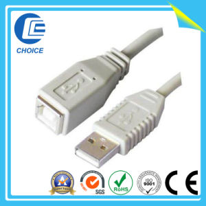 USB Cable (CH40110) pictures & photos