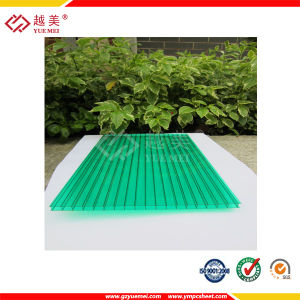 Clear Heat Resistant Plastic Twin Wall Polycarbonate Hollow Sheet Wall Decoration Sheet pictures & photos
