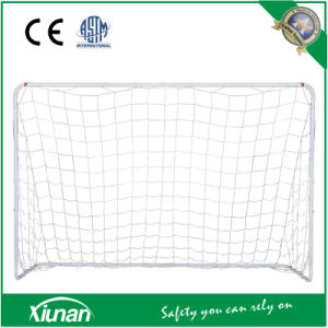 Xiunan Soccer Goal Set for Kids pictures & photos