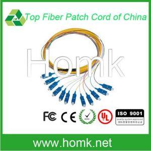12 Core Sc Bundle Fiber Optic Patch Cord pictures & photos
