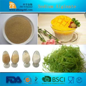 Alginate Sodium pictures & photos