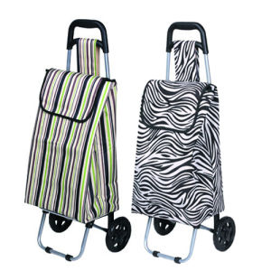 Metal Folding Disabled Shopping Cart (SP-527) pictures & photos