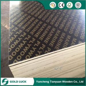 Directly Sell Brown Color with Logo Construction Plywood pictures & photos