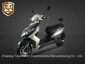 800W Aluminium Alloy Wheel Hubs Sport Electric Motorcycle
